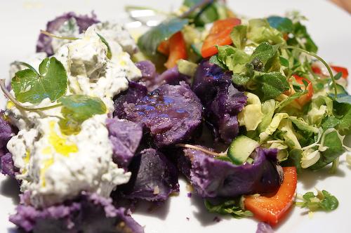Violette Kartoffeln mit Quark und Leinöl