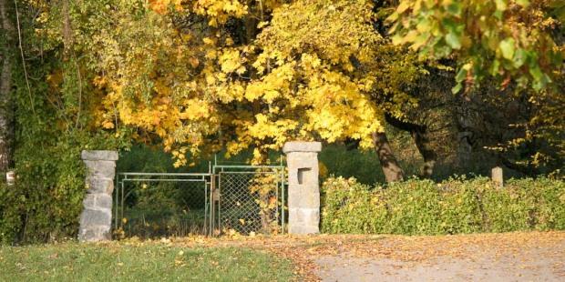 Das Tor zum wilden Garten