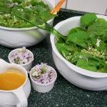 Lindenblättersalat mit Wiesenschaumkrautblüten