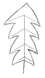 Schrotsägeförmig