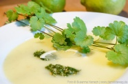 Zitronige Kartoffelsuppe mit Gundermannpesto